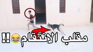 جبت كلب لاخوي الصغير ???????? - شوفوا ردة فعله ???? !!!