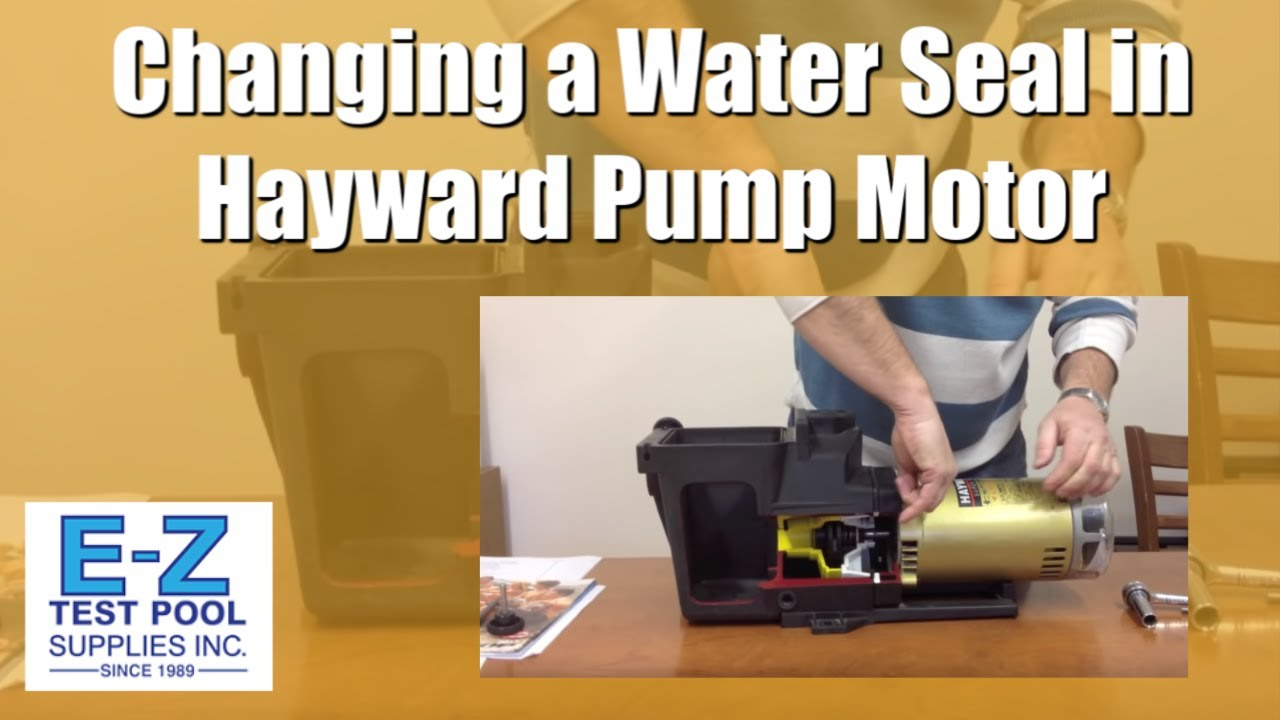 How To Change A Water Seal In Hayward Pool Pump Motor