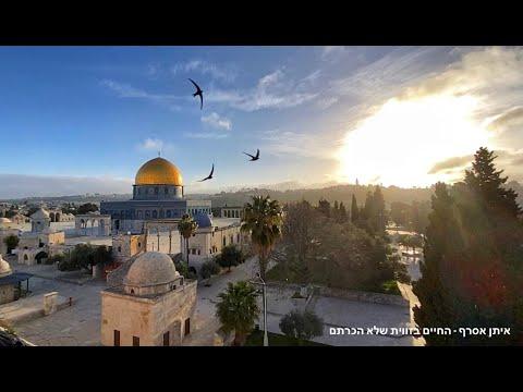 JERUSALEM by artist Eitan Asraf