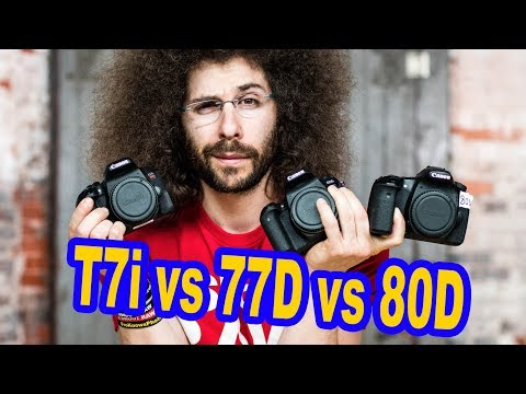 Canon T7i vs Canon 77D vs Canon 80D Which to Buy?