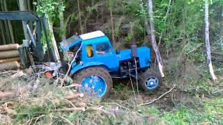 Miško traktorių šou 2
