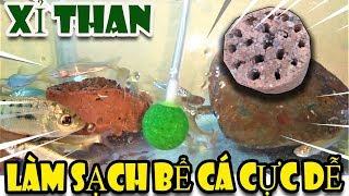 Mẹo với xỉ than làm trong nước bể cá siêu sạch   Văn Hóng