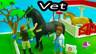 Owner Surprised Mare Has Foal - A Day with Playmobil Horse Vet - Video