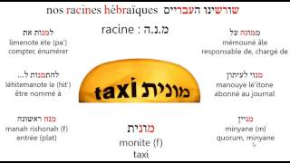 Racinemonite