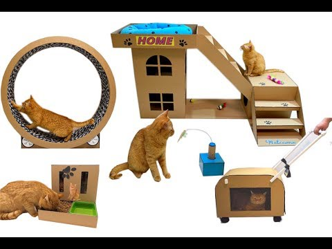 Top 5 best ideas for a cat from cardboard