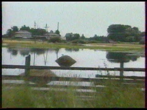 Шахунское телевидение / Август / 2004
