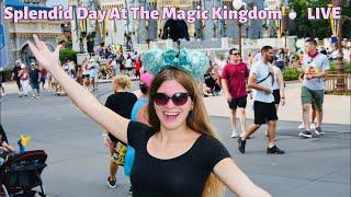 Splendid Day At The Magic Kingdom