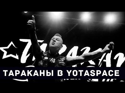 Смотреть клип Панк-Рок-Влог. Нашествие тараканов в YotaSpace! онлайн бесплатно в качестве