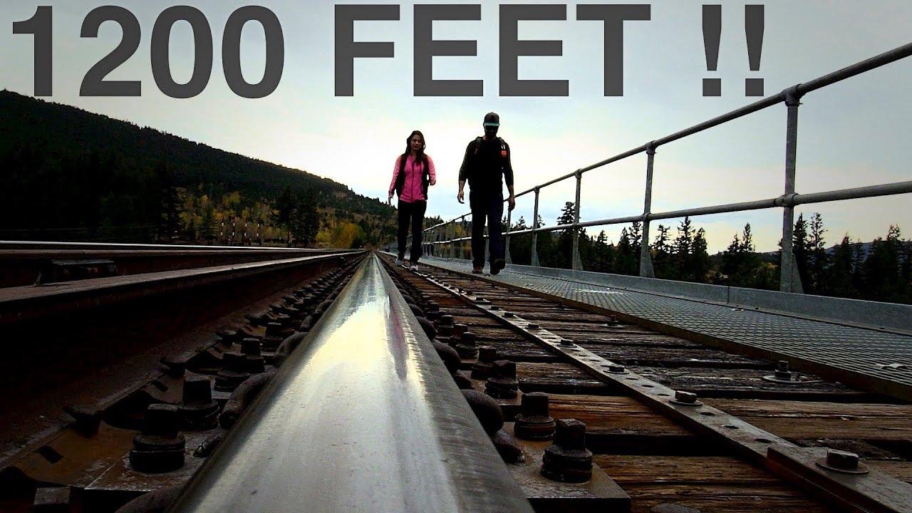 American Timber Rail