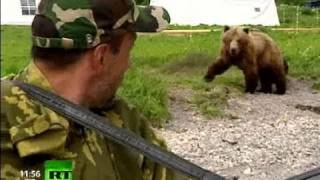 Land of Fire and Ice: Bear Facts about Kamchatka