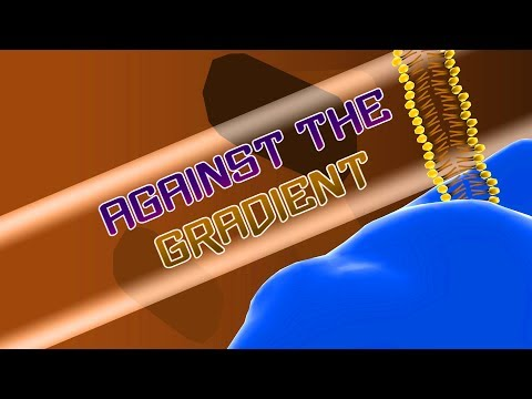 Against The Gradient - Biology Science Educational Indy Game First Look