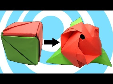 Modular Origami Magic Rose Cube Instructions - YouTube   360x480