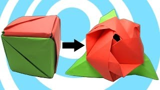 Modular Origami Magic Rose Cube Instructions(Learn how to make a paper modular origami magic rose cube instructions. This is a great modular origami model made by 6 units. The cube (box) may ..., 2014-05-17T07:22:49.000Z)