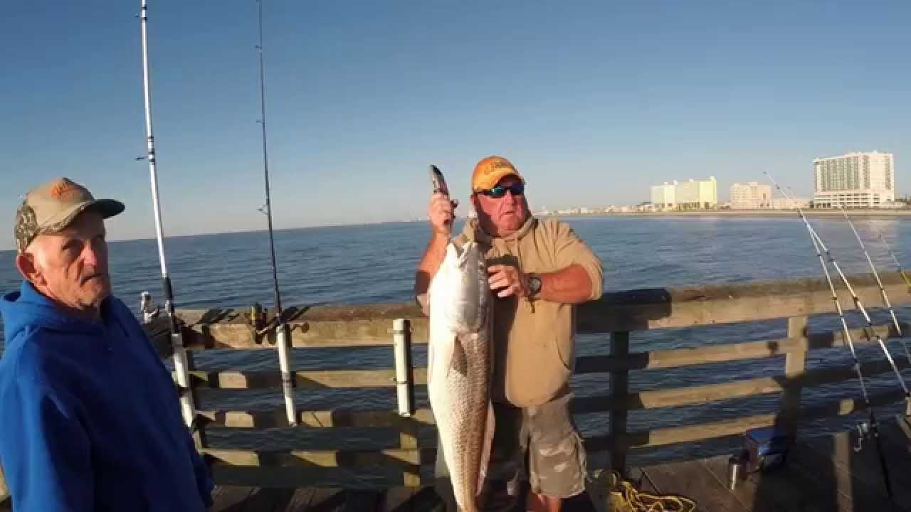 Cherry grove sc sea cabins fishing pier 2014 youtube for Myrtle beach pier fishing report