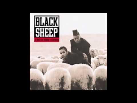 Go to HailBlack with NV No Vision    Black Sheep
