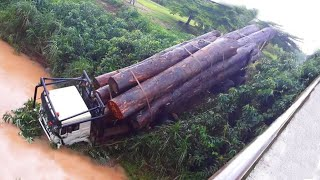Dangerous Huge Tree Felling and Crazy Logging Trucks Fails in Brazil & USA