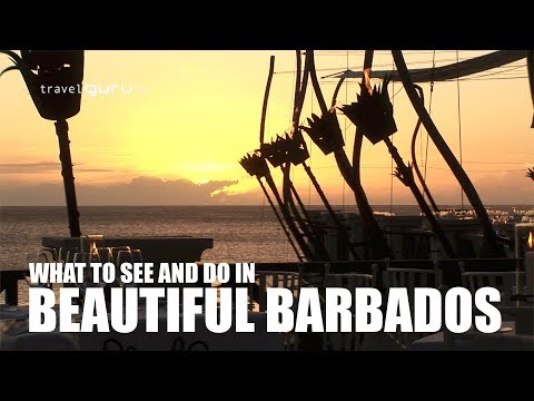 Experience Barbados - travelguru.tv