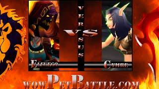 Grand Master Pet Tamer Cymre Brightblade 6.0