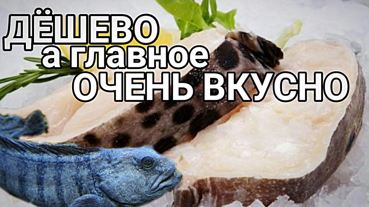 Стейк зубатки запеченный в духовке! как приготовить рыбу ЗУБАТКА