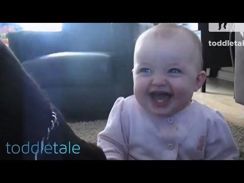 Djevojčica Histerično Se Smiju Na Psu Jesti Kokice | Smijeh Bebe