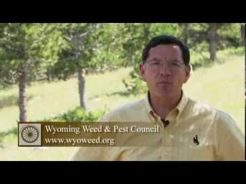 US Senator John Barrasso on Wyoming