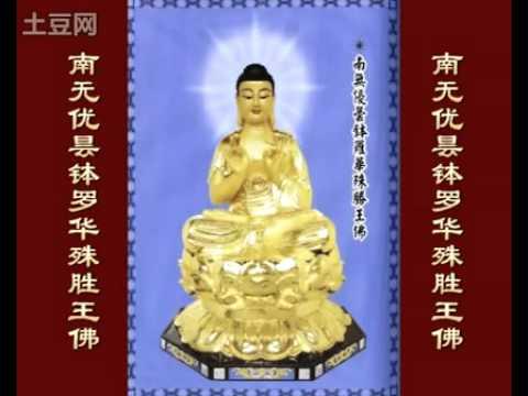 八十八佛大懺悔文(88 buddhas change your life )-----法馨講堂
