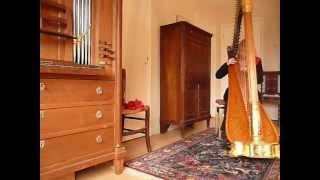 Regina Ederveen plays Romance de Amor (Jeux Interdits) for guitar in an arrangement for harp.MOV