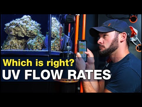 how-important-is-the-right-flow-rate-for-a-uv-sterilizer-in-reef-tanks?-|-brstv-investigates