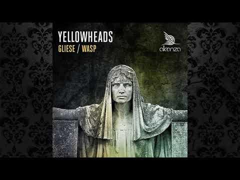 The YellowHeads - Gliese (Original Mix) [ALLEANZA]