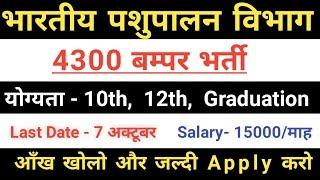 भारतीय पशुपालन विभाग मे आई बम्पर भर्ती | 4300 पदों पर बहाली,  जल्दी Apply करो