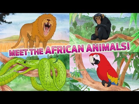 Learn African Animals : Kids Picture Book App on iPhone – Fun African Wildlife Puzzle
