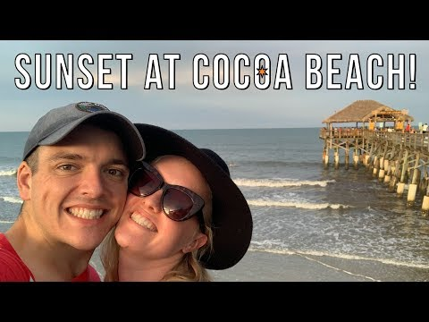First Visit To The Atlantic Ocean!   Shark Sighting & Other Cocoa Beach Critters