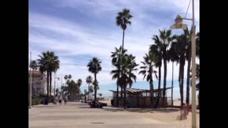 Californication. Блудливая калифорния