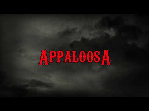 Youtube: BGL –  Appaloosa