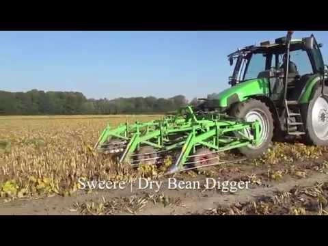 Dry Bean Digging - Digger / Cutter | Sweere
