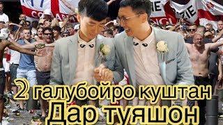 убыли 2 геев на свадьбе ( жесть)