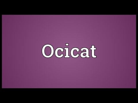 Ocicat Meaning