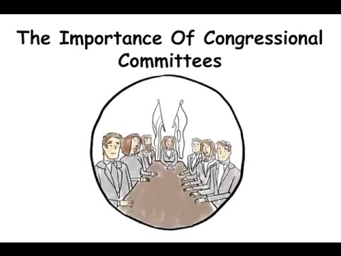 The Importance of Congressional Committees