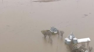 Mississippi River crests 12 feet above flood stage south of St. Louis