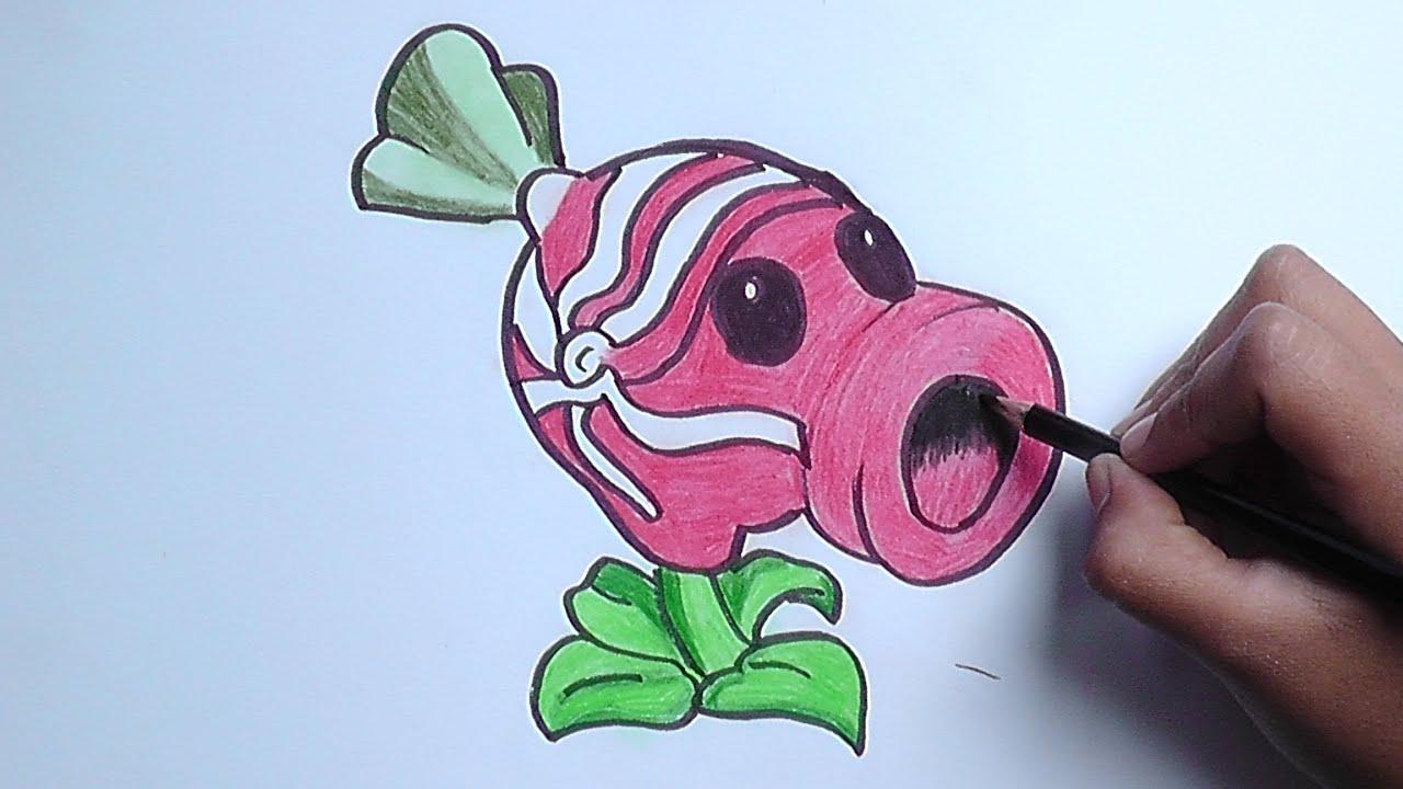 Como Dibujar A Un Pomelo De Pvz: Dibujando A Guisante Dulce (Plantas Vs Zombies)