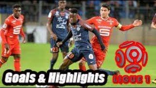Montpellier vs Dijon - Goals & Highlights - Ligue 1 18-19
