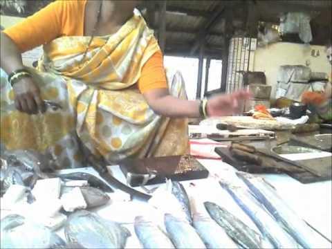 Mumbai (Bombay): Fish Guide