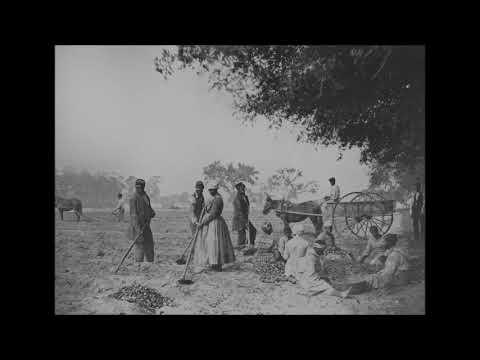 Treemonisha / Scott Joplin