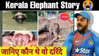 Elephant Died At Velliyar River : भूखी गर्भवती हथिनी को तड़पा कर उतारा मौत के घाट : Elephant Death