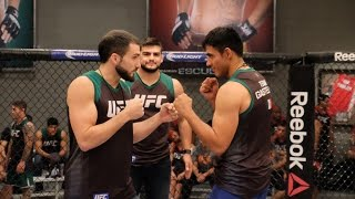 Fight Night Monterrey: The Ultimate Fighter Match-ups