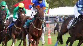 TAPinto Horses Far Hills Races 2018