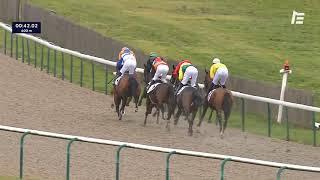 Vidéo de la course PMU PRIX DE CHASSELOUP