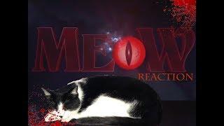 MEOW (SHORT HORROR FILM REACTION)/GIVEAWAY ANNOUNCEMENT