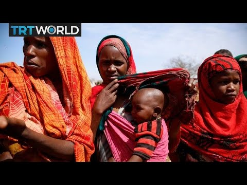 Somalia Conflict: Somalis struggle to cope with life in conflict