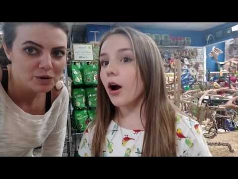 Piper Rockelle Needed My Help Choosing A Parrot to Steal?| STORY TIME SUNDAY